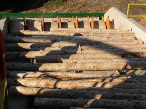 LogPro Log Singulator 20