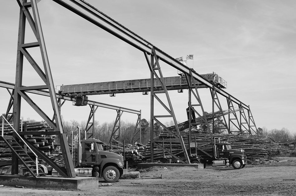 Lineal Log Crane